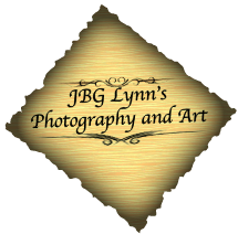 JBG Lynn's Photography and Art